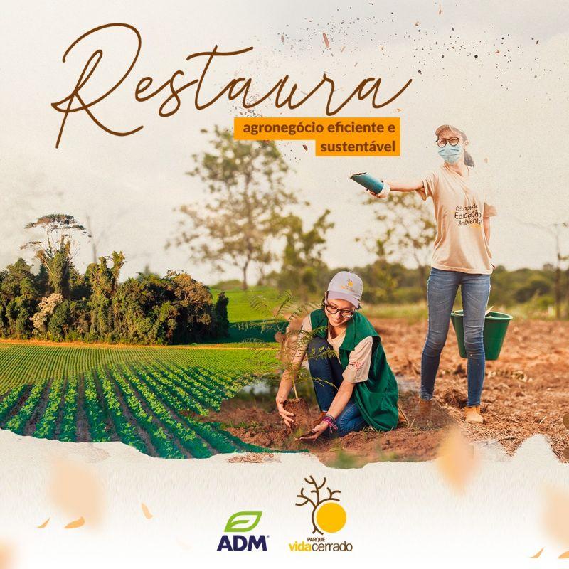 ADM e Parque Vida Cerrado anunciam parceria para restauração ambiental no Oeste da Bahia